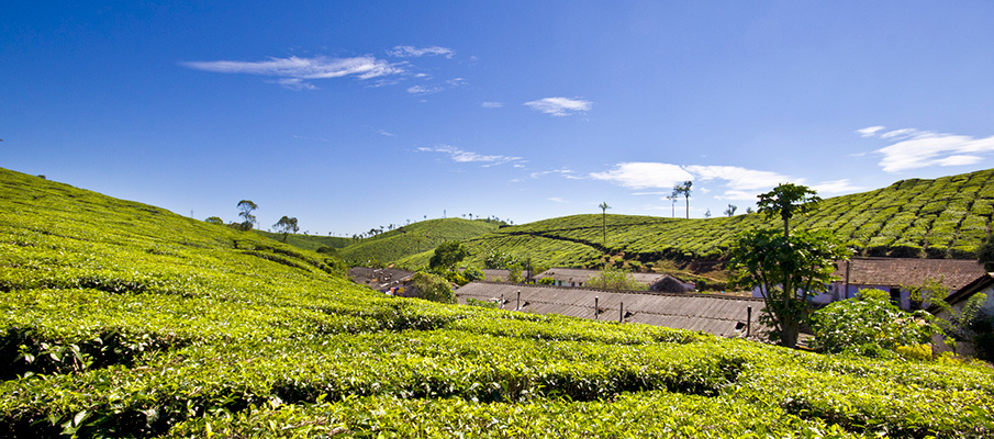 offbeat places in Kerala