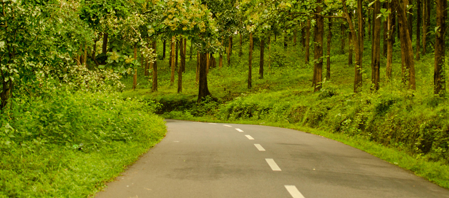 Bangalore Road Trips