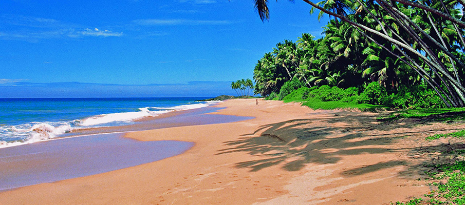 Best Beaches of Goa