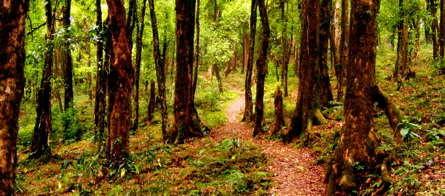 Offbeat places in West Bengal