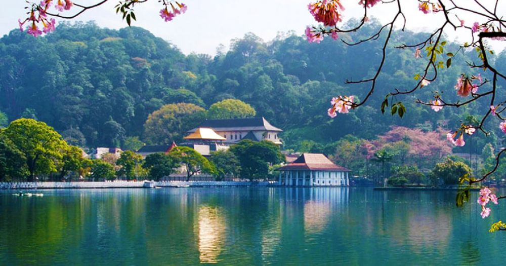 Things To Do in Kandy - Kandy Lake and Market