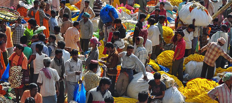 Mullick Ghat Flower Market - Things-to-do in Kolkata