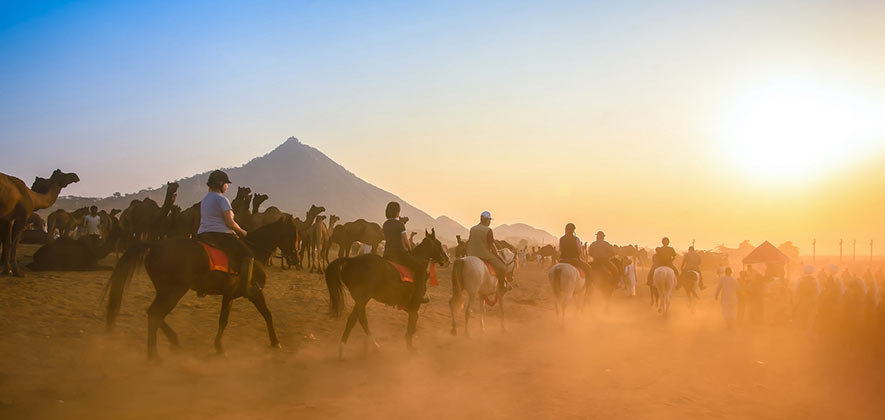 Things To Do in Rajasthan - Horse Riding in Pushkar