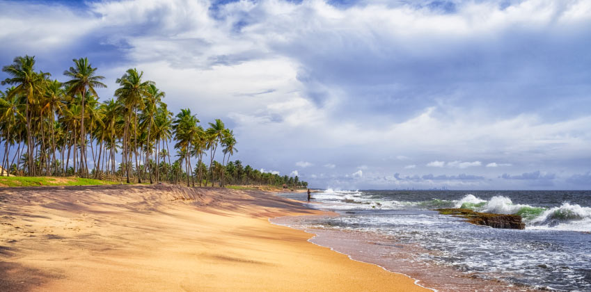 Things to do in Colombo - Explore Negombo