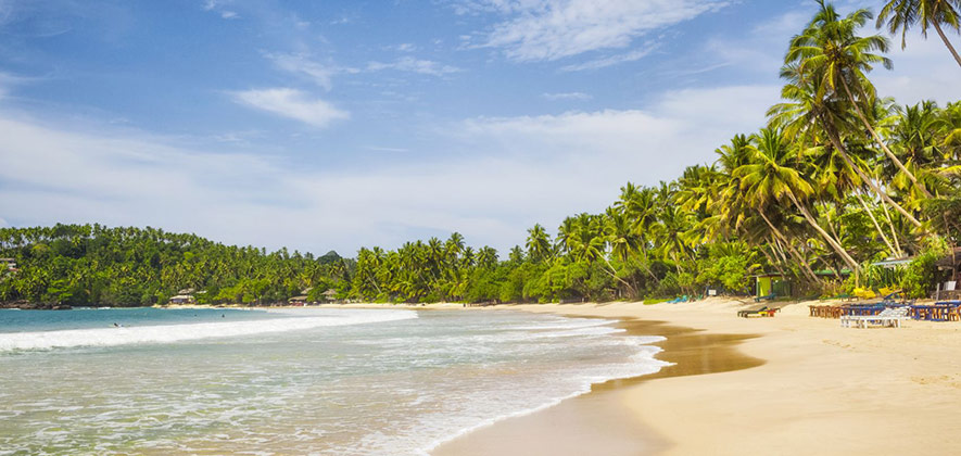 Mirissa - Must visit places in Sri Lanka