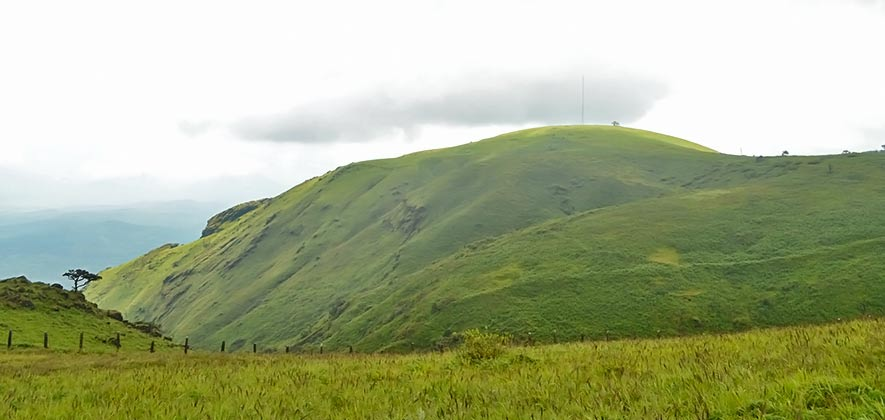 Best Places to Trek in Karnataka - Baba Budangiri Trek