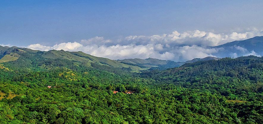 Best Places to Trek in Karnataka - Brahmagiri Hill Trek
