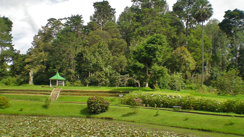 Things To Do in Nuwara Eliya - Victoria Park