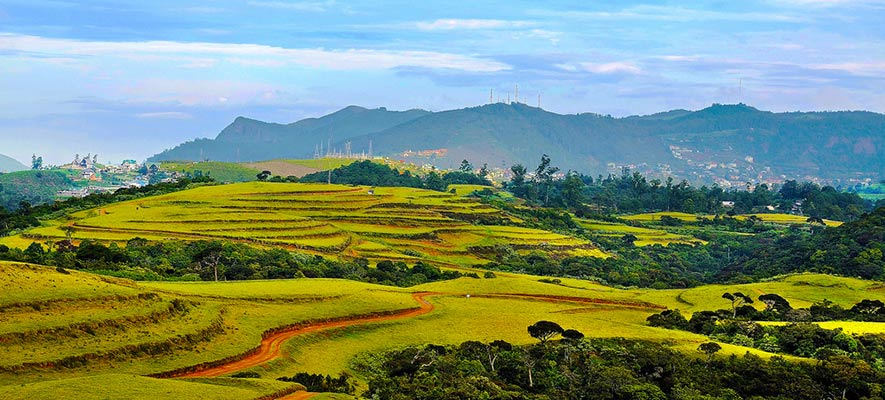 Things To Do in Nuwara Eliya - Moon Plains