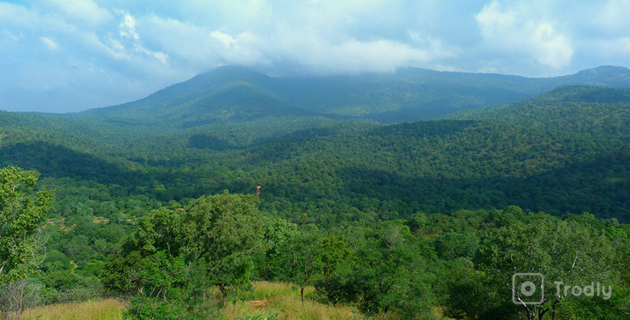 Hikes near Bangalore - Bheemeshwari Wildlife-Sanctuary