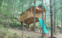 Treehouse Adventure in Shimla Hills