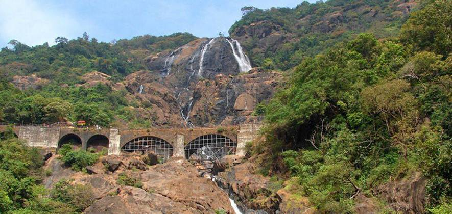 Dudhsagar Falls Trek from Bangalore