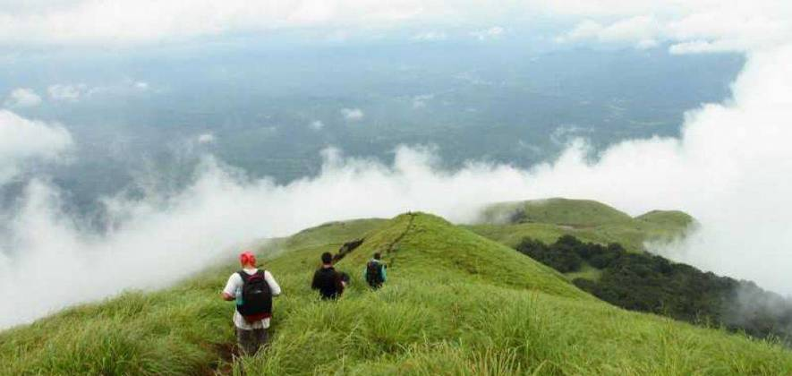 Lakshmi Hill Trekking Options Near Munnar