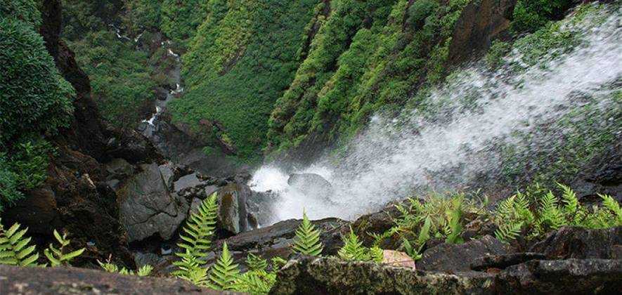 Monsoon Thrills In Agumbe (Extended Weekend Special)