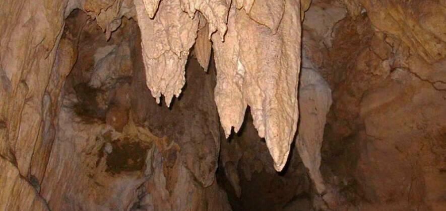 Baratang Island Limestone Cave & Mud Volcano Tour