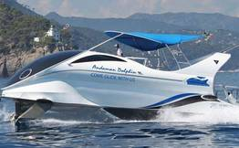 Andaman Dolphin: Glass Boat Ride