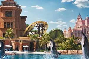 Best Theme Parks in UAE You Can't Afford To Miss