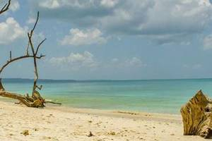 Ultimate Travel Guide to Andaman Islands
