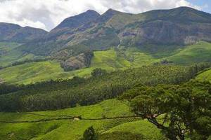The Top 10 Outdoor Activities in Kerala