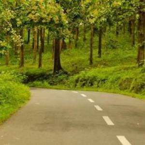 6 Best Road Trips from Bangalore