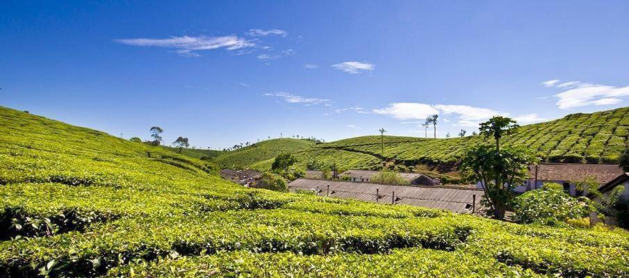 Offbeat Places to Visit in Kerala
