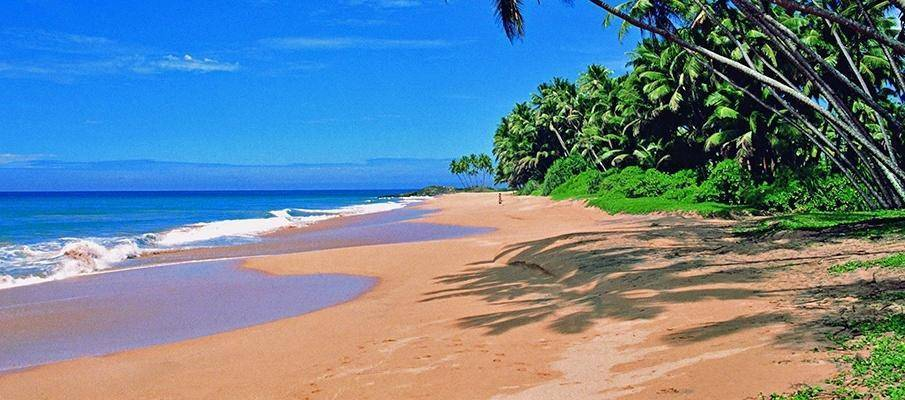 Goa's Top Beaches - 20 Best Beaches of Goa!