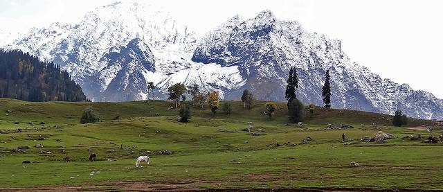 Sonmarg View