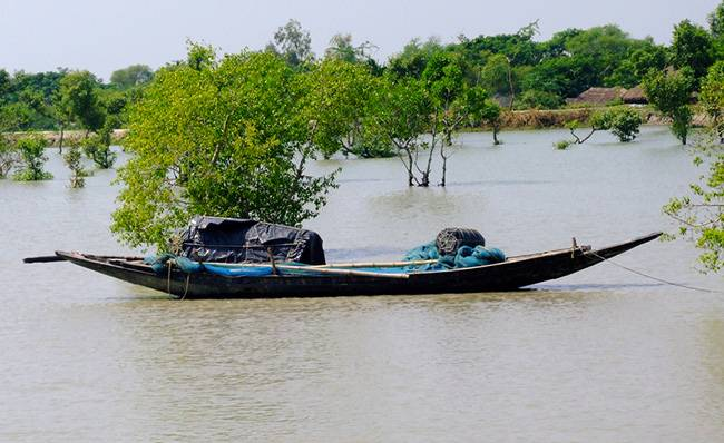 Sundarbans - Top Must See Places in India