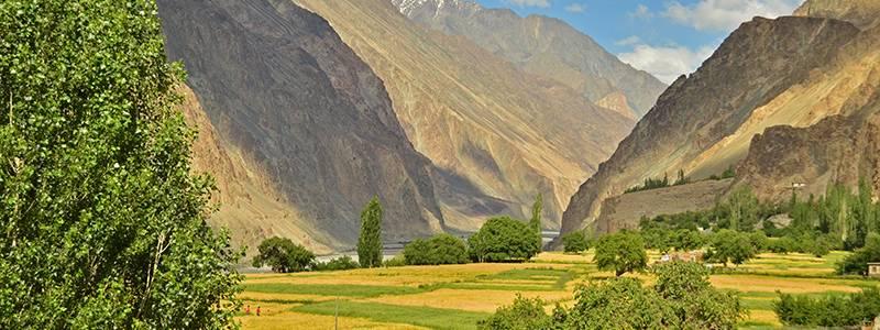 Ultimate guide to Ladakh - Places to Visit - Turtuk