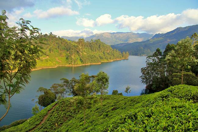 Hill Stations of South India: Munnar