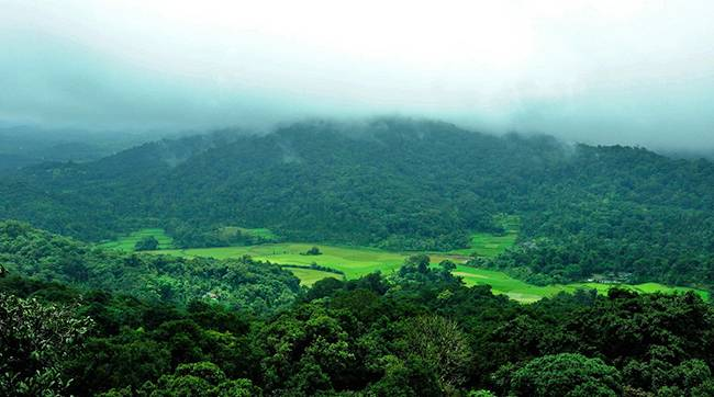 Hill Stations of South India: Coorg