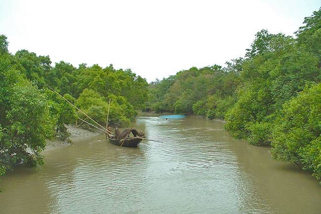 Adventures in India: Sundarbans boat tour