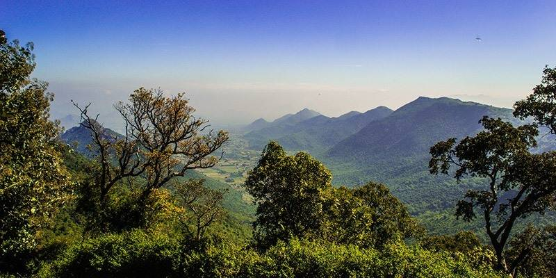 Weekend Getaways from Bangalore - Yercaud