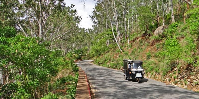 Nandi Hills Road Trip
