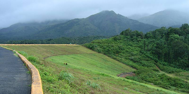 Road Trip from Bangalore to Wayanad