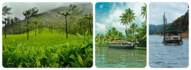 Best Road Trips from Bangalore: Munnar - Thekkady - Alleppey