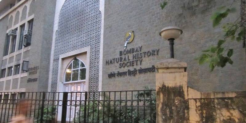 Must Visit Museums In India: BNHS Mumbai