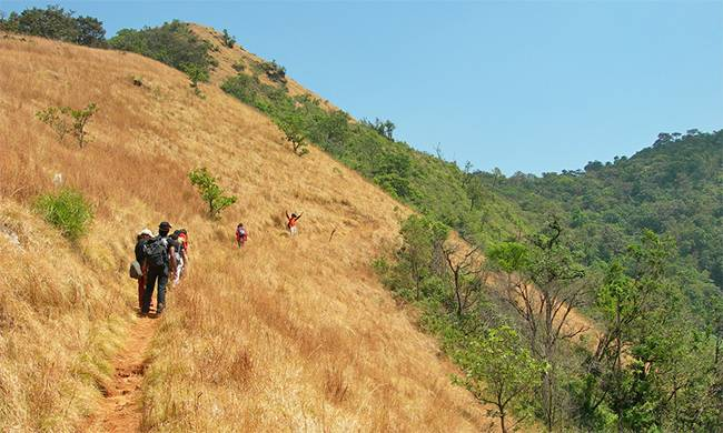 Best Treks in India: Kodachadri Trek