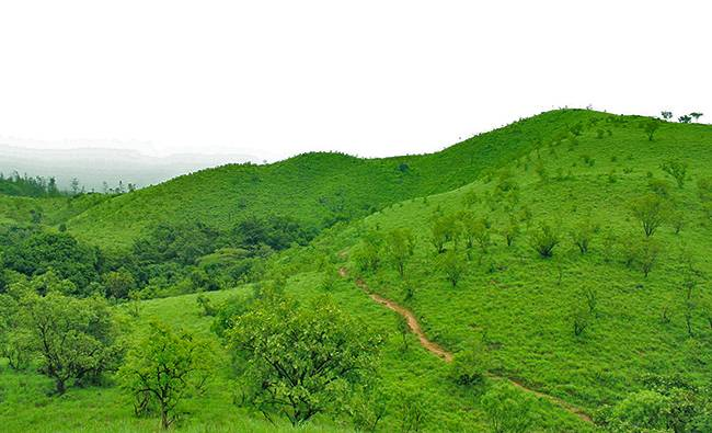 Best Treks in India: Kumara Parvatha Trek