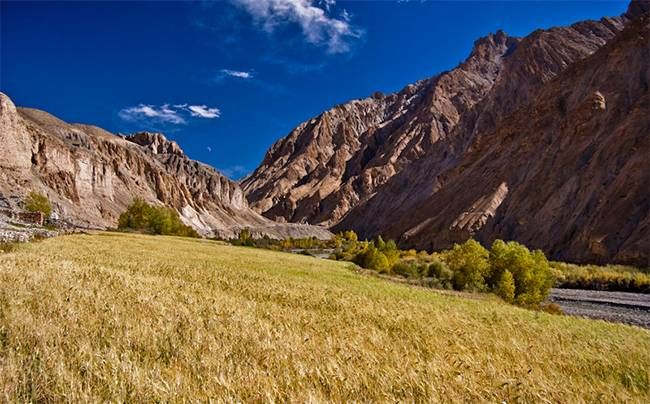 Best Treks in India - Markha Valley Trek