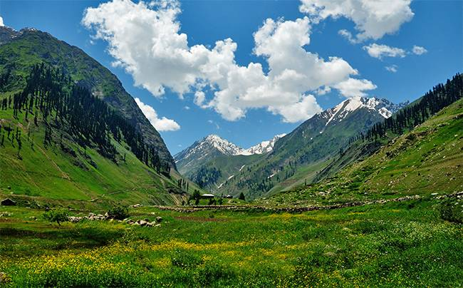 Best Treks in India: Valley of Flowers, Hemkund Trek