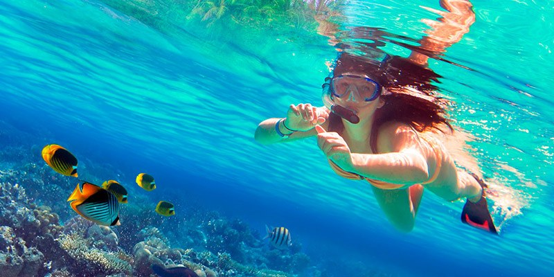 Things To Do in Havelock Island - Snorkeling at Havelock