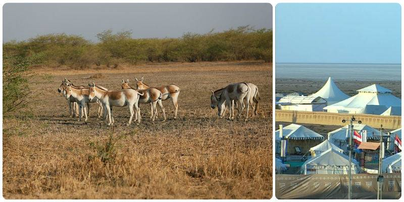 Road Trips in India - Mumbai - Kutch