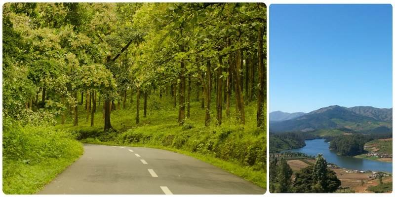 Road Trips in India - Bangalore - Bandipur - Ooty
