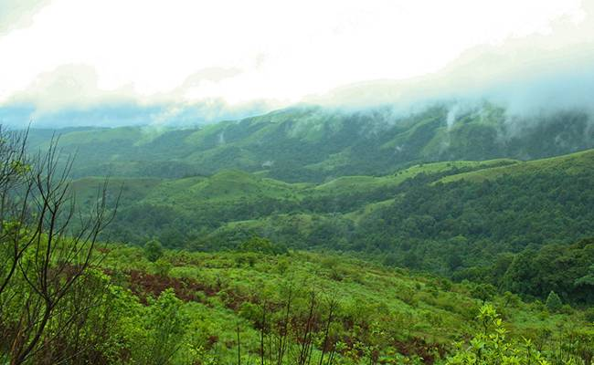 Offbeat Places to Visit in Karnataka: Agumbe
