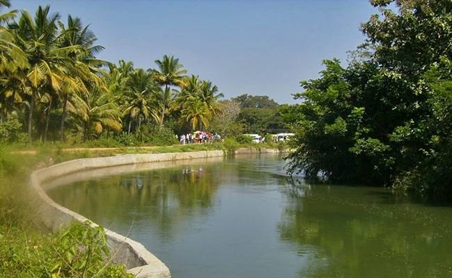 Marathons to travel for in India - Kaveri River Trail