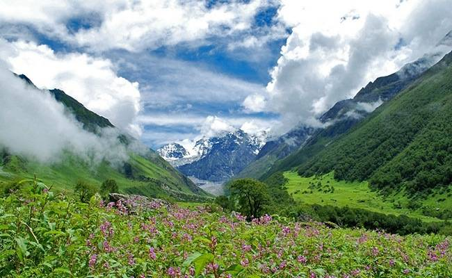 Natural Wonders of India: Valley of Flowers