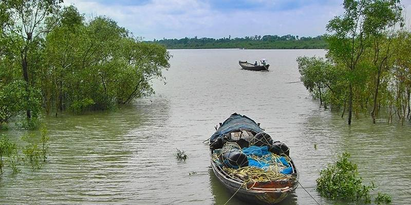 Places in India to Get Off the Grid - Sundarbans