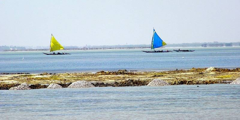 Offbeat Places to Visit in Andhra Pradesh - Pulicat Lake
