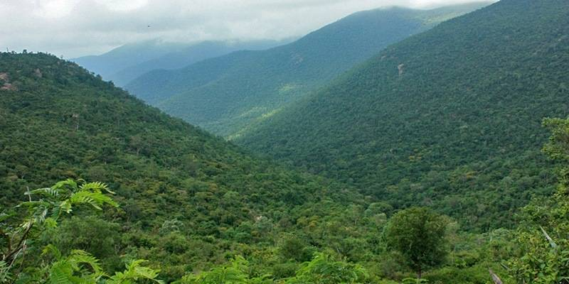 Offbeat Hill Stations in India - MM Hills